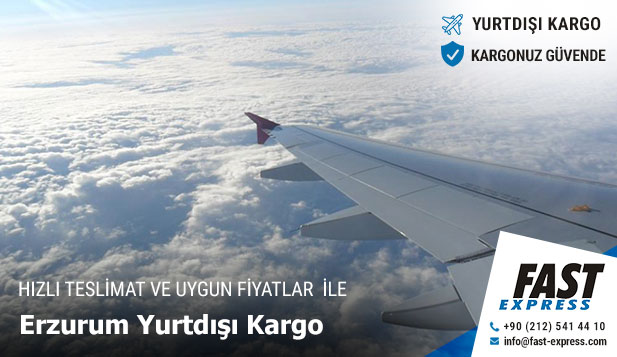 Erzurum Yurtdışı Kargo